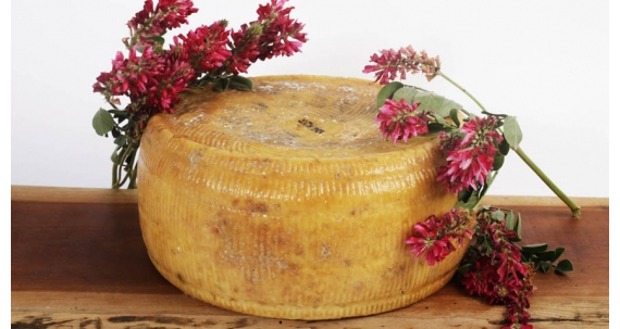 Pecorino naturally seasoned without lactose